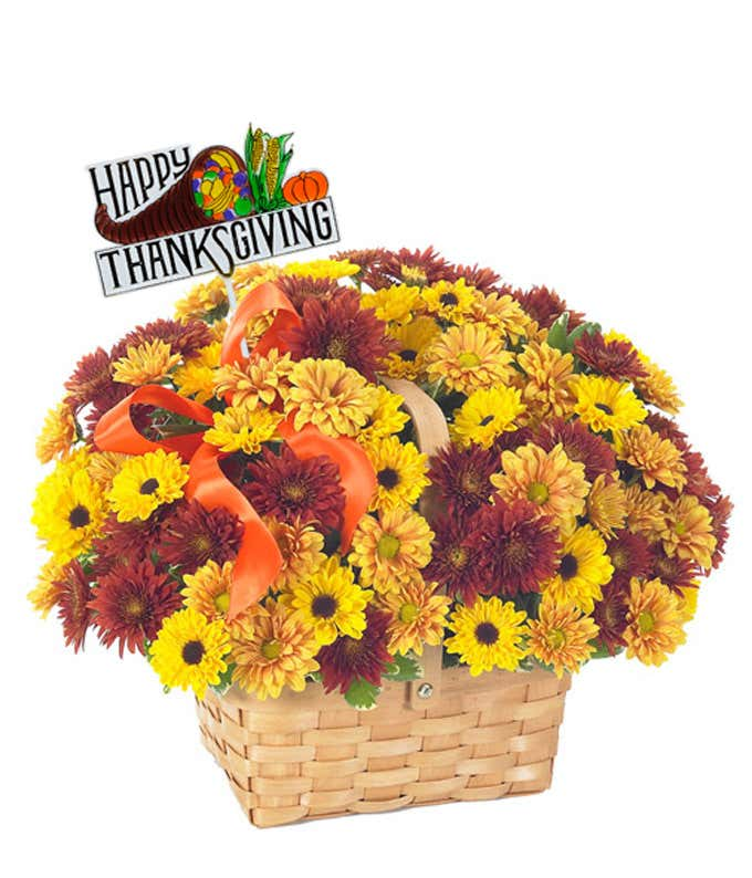 Daisies delivered in a woven basket with a Thanksgiving Pick