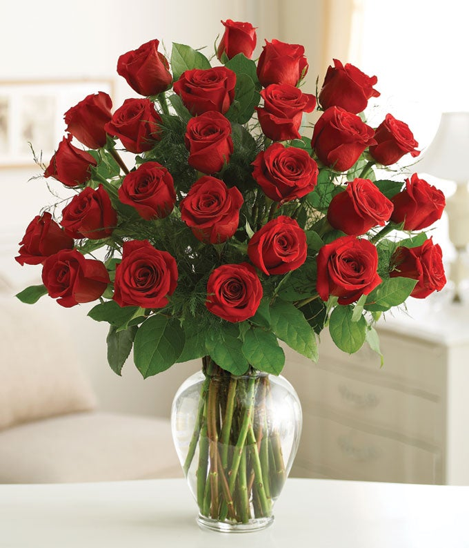 Two Dozen Premium Long Stem Red Roses At From You Flowers