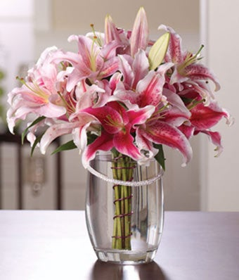 Pink stargazer lilies florist arranged in an oval vase