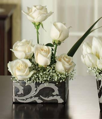 Modern White Roses