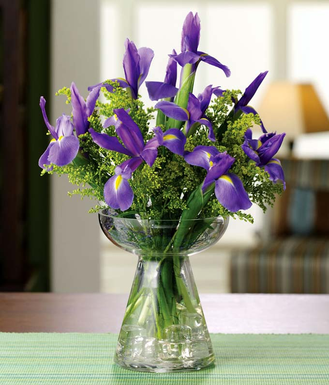 Purple irises and yellow solidago in bud vase