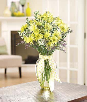 Yellow Daisy Delight At From You Flowers