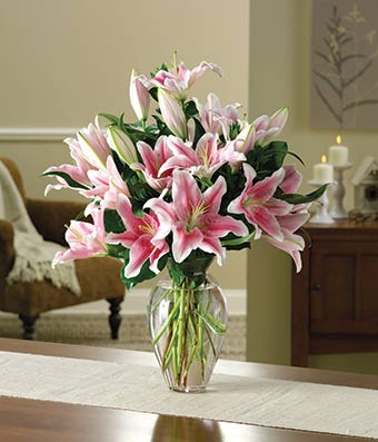 all stargazer pink lily bouquet