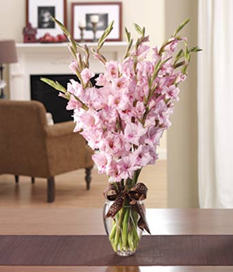 Pink Gladiolus In A Traditional Gl Vase