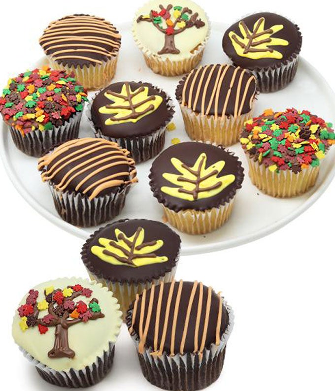 Autumn's Favorite Belgian Chocolate Covered Cupcakes