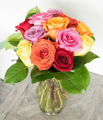 One Dozen Multi-Colored Roses