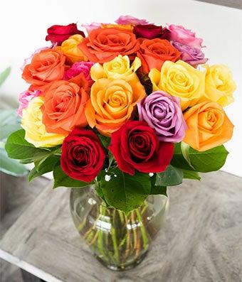 Two Dozen Multi-Colored Roses