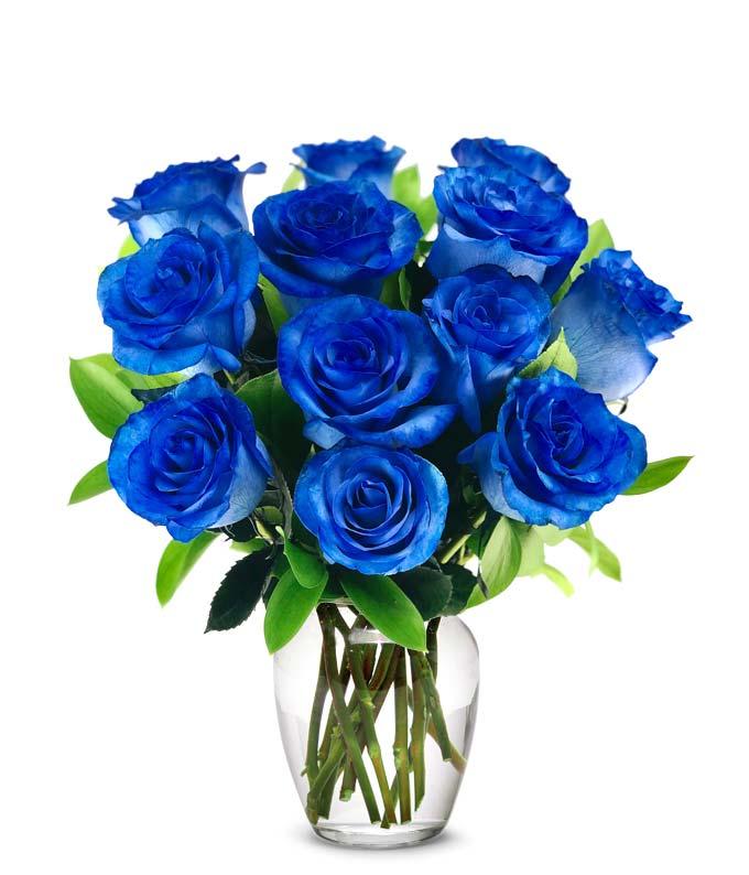 One Dozen Blue Roses