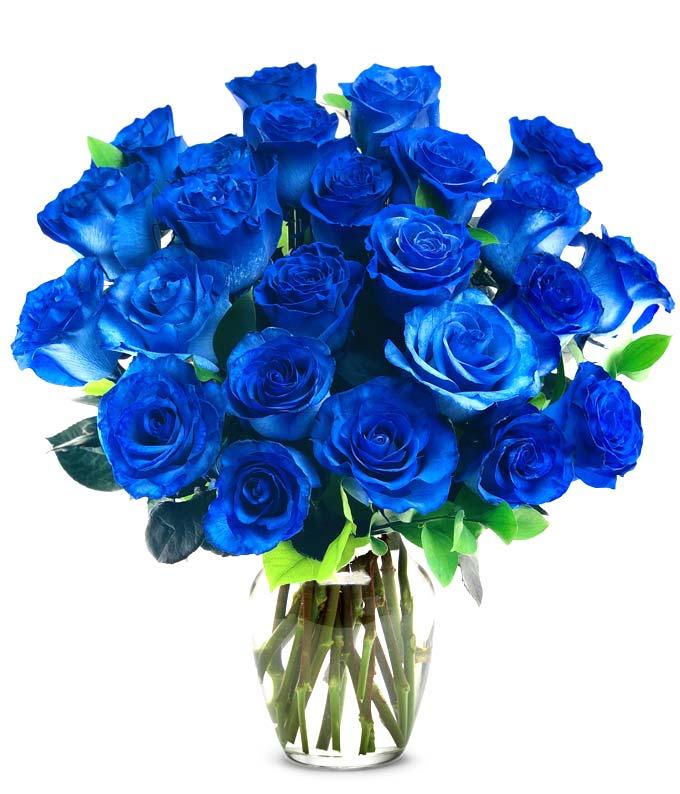 Two Dozen Blue Roses