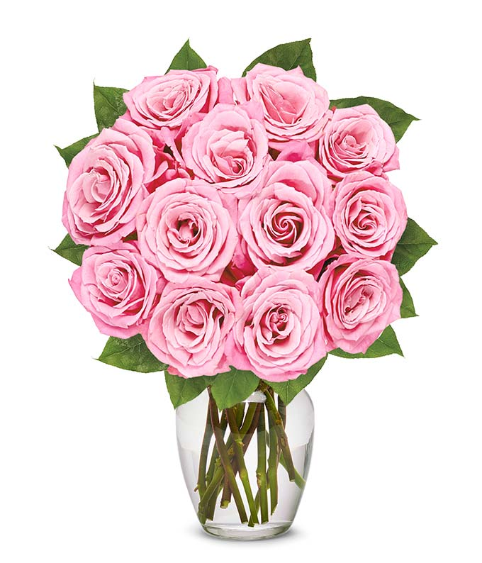 One dozen pink roses for delivery on Valentine's Day
