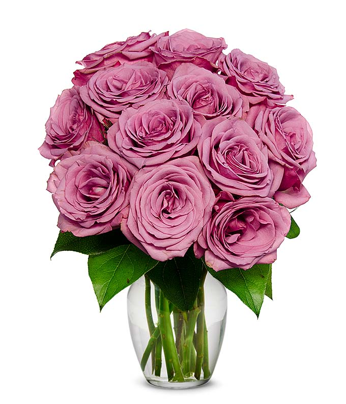 one dozen purple roses at from you flowers