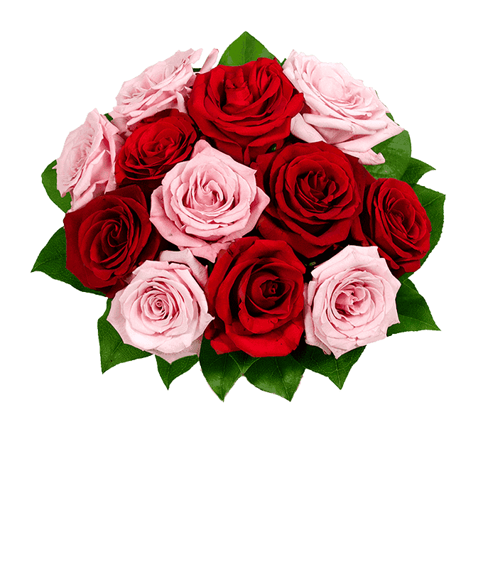 Bouquet of half red roses and half pink roses