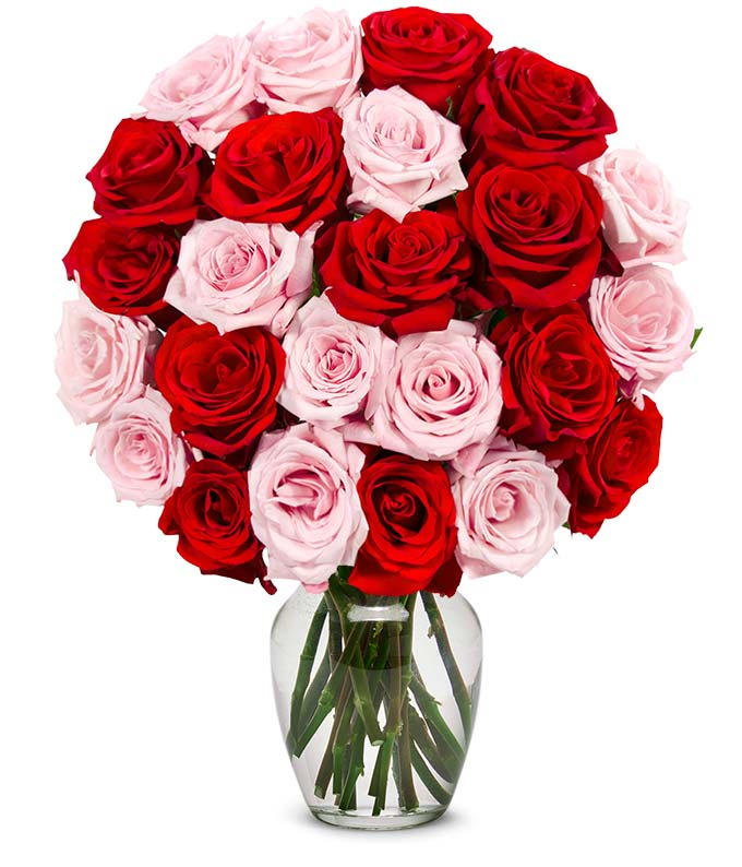 Two dozen rose mix with pink and red roses