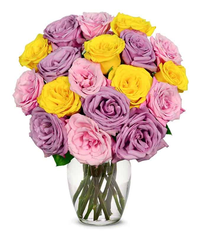 Light pink roses, purple roses and yellow roses
