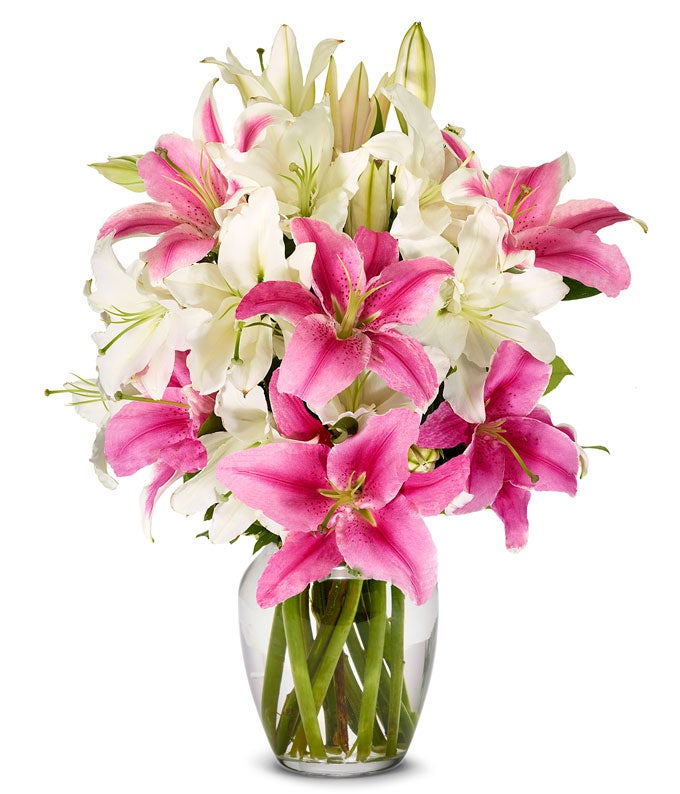 Sympathy Lilies with Stargazers