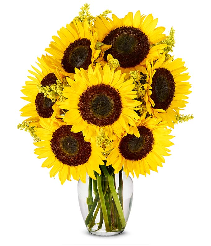 Send mom sunflowers