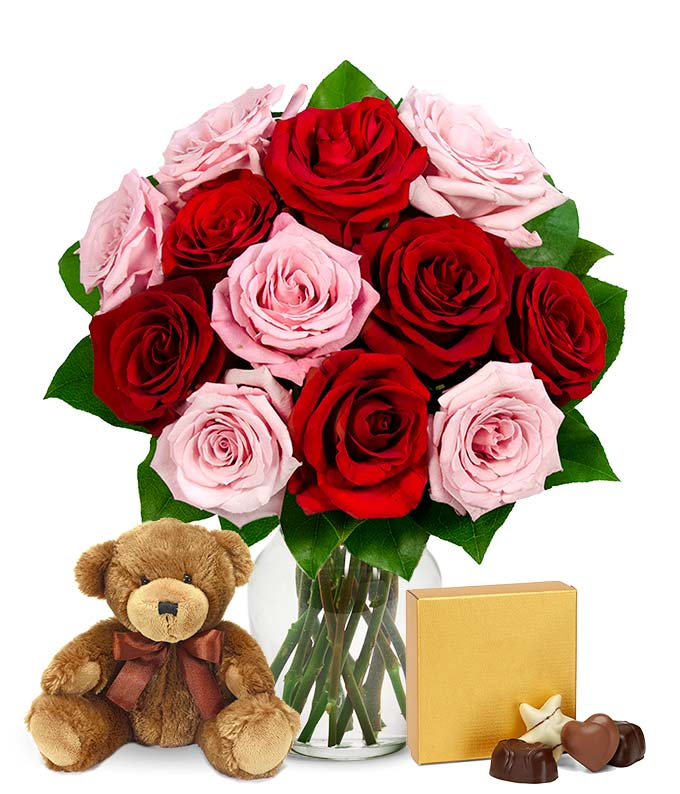 One Dozen Red & Pink Roses with Godiva and a Bear