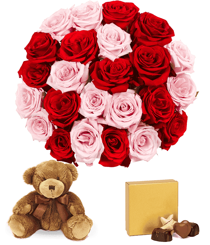 Unique Valentine's gift with two dozen pink & red roses delivered  with teddy bear and chocolates