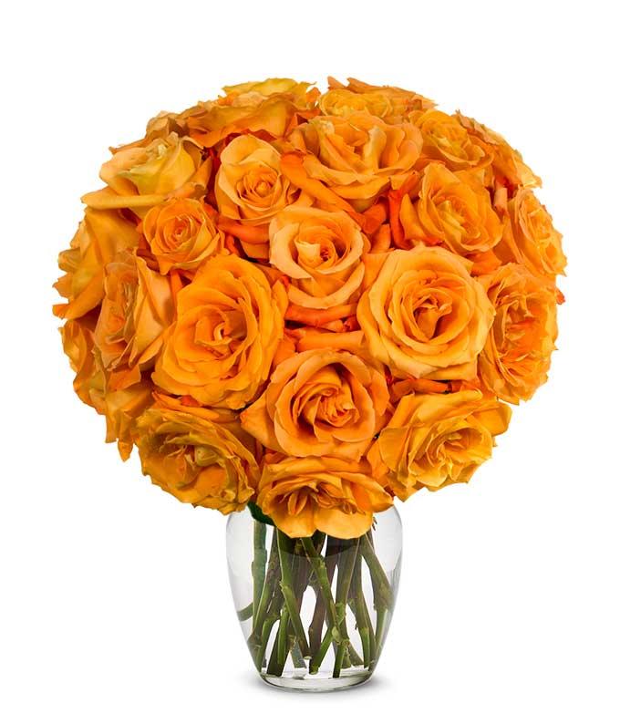 Two Dozen Orange Roses