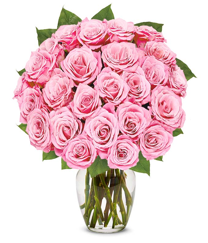 Two Dozen Light Pink Breast Cancer Awareness Roses