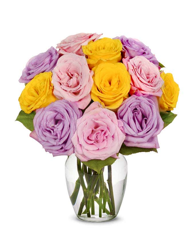 One Dozen Pastel Roses