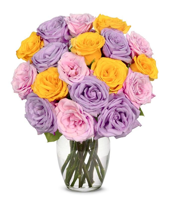 One and half dozen pastel roses