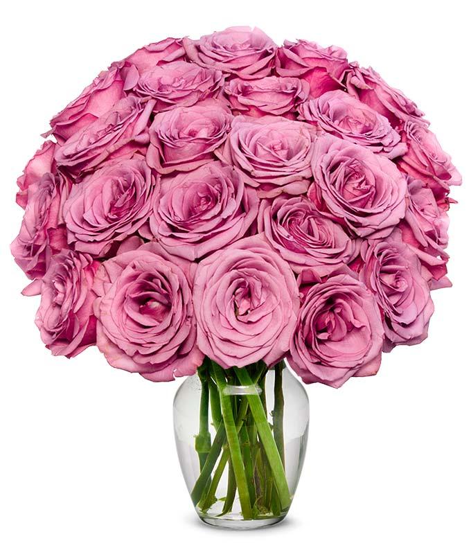 Two Dozen Purple Roses
