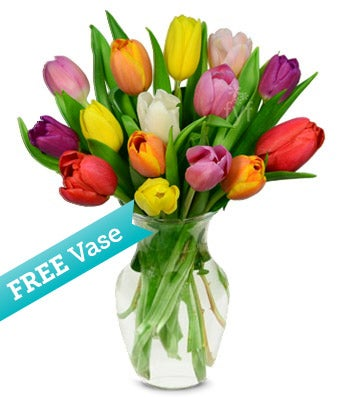 Free Face Vase with 15 Tulips
