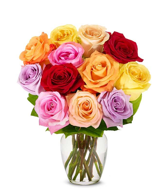 One Dozen Assorted Mixed Roses
