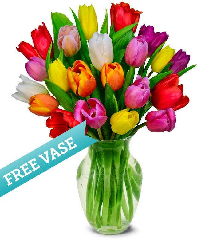 Assorted Tulips with a Free Clear Vase