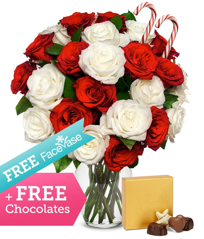 Two Dozen Candy Cane Roses with Free FaceVase & Chocolate