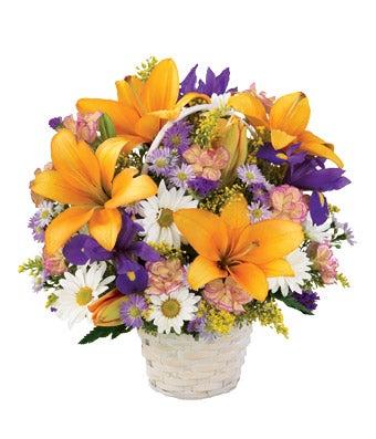 Natural Beauty Basket