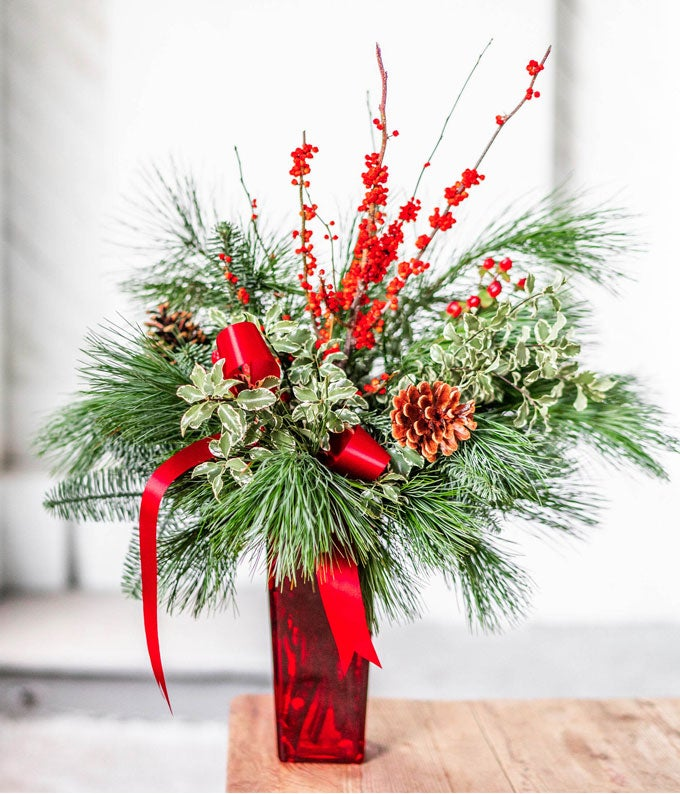 Pine branches, pine cones and holly branches in red vase for Christmas