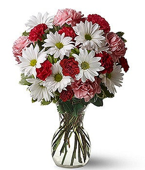 Red and pink carnation and daisies bouquet as cheap Valentine's day flowers