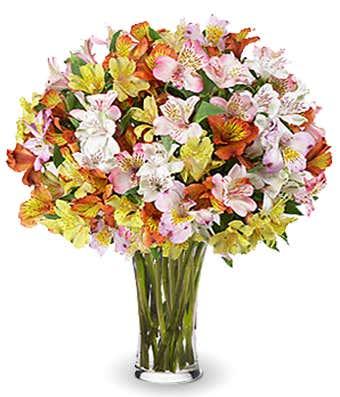 Mixed Peruvian lilies bouquet