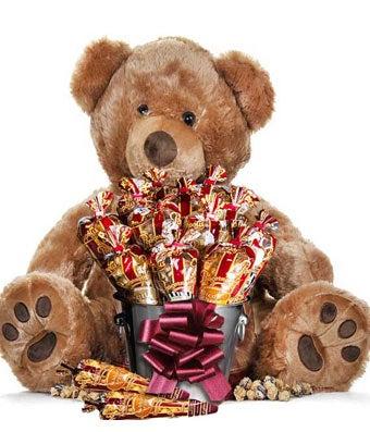 Popcorn Bear 24 Inch