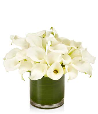 White Calla Lily Cylinder At From You Flowers