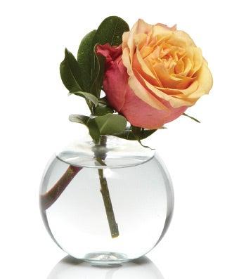 Rose Bud Vase Bundle