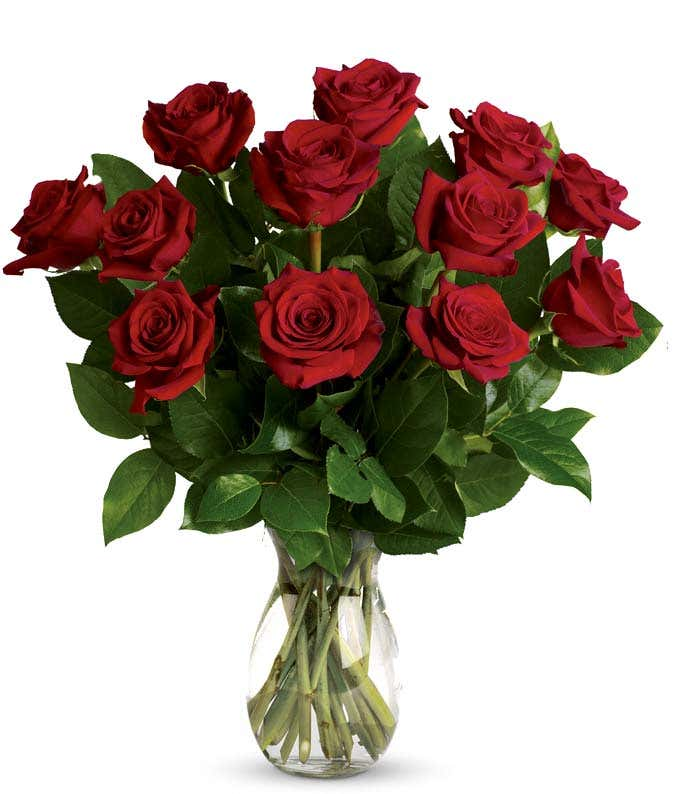 Classic Romance Red Roses