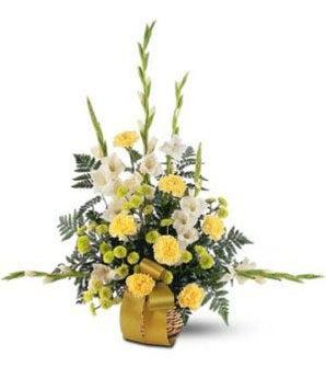 Yellow carnations white gladioli chrysanthemums sending flowers item description mightylinksfo