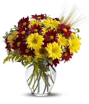 Fall for daisies red yellow mums autumn flower arrangements item description mightylinksfo