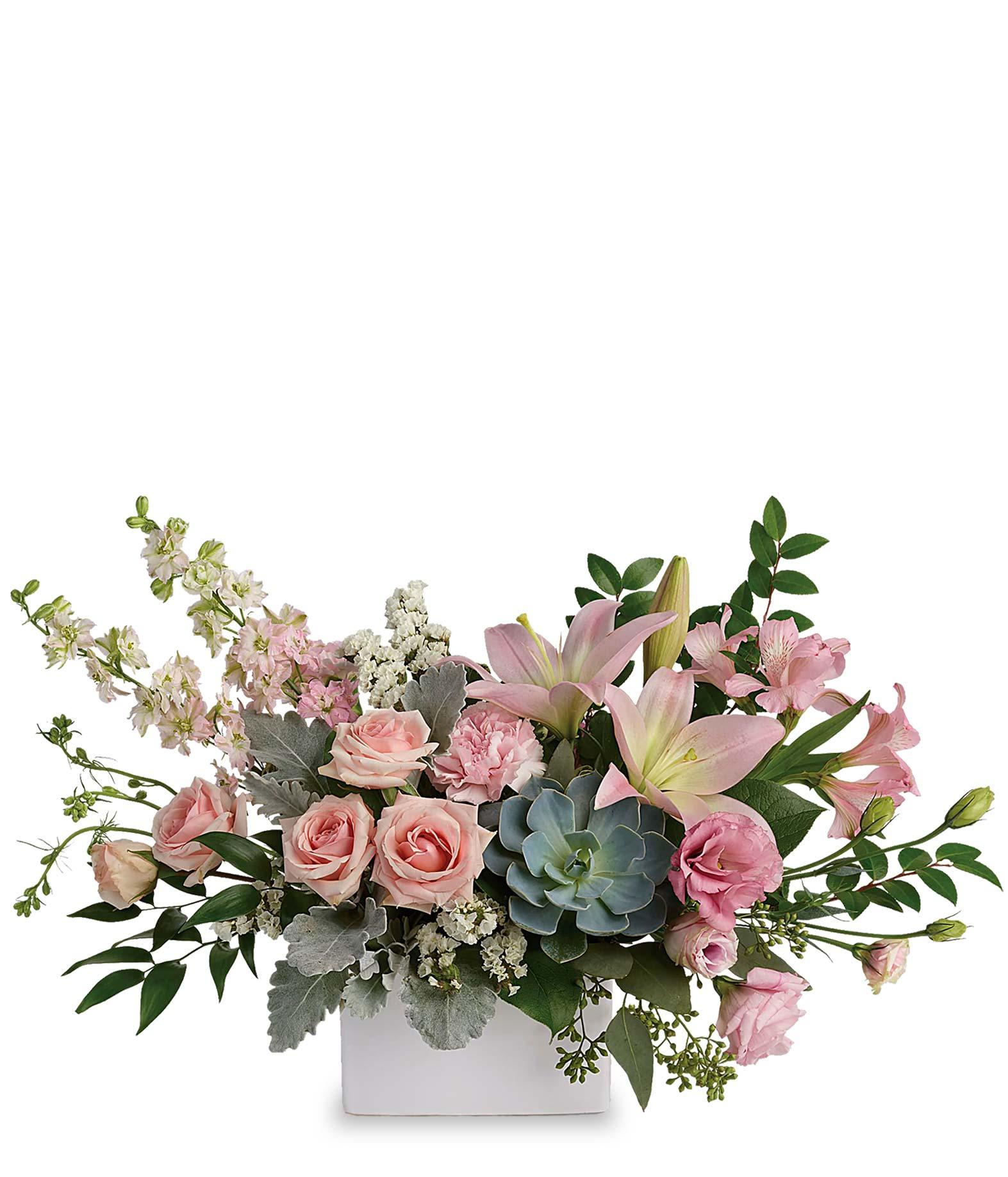 Romance Succulent Arrangement At From You Flowers