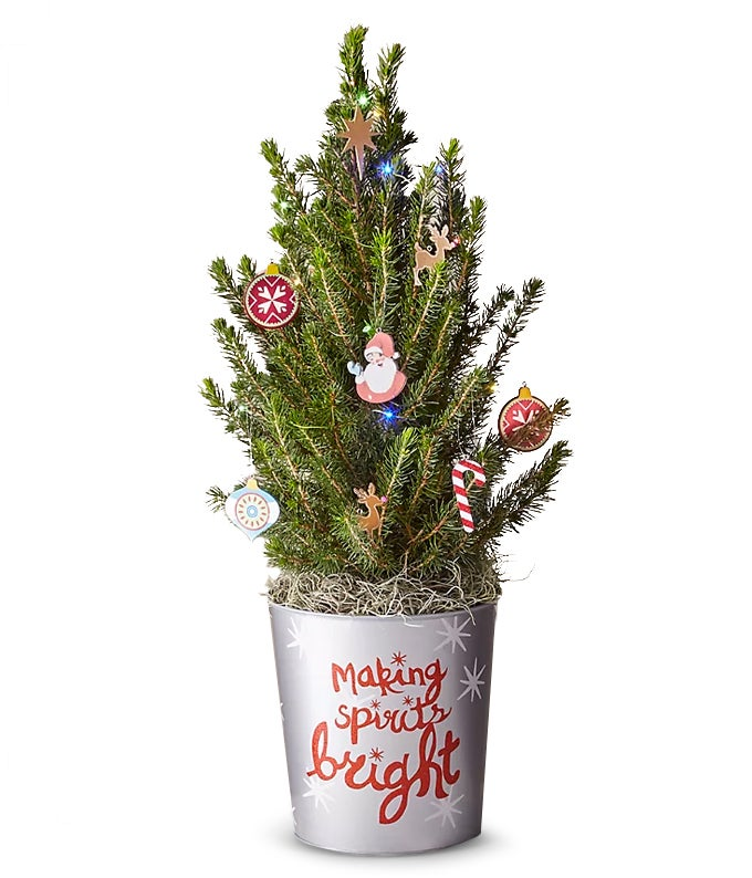 Mini Spruce Tree with Ornaments