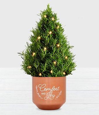 Rose-Merry Christmas Tree