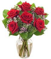Half dozen red roses for delivery in red vase
