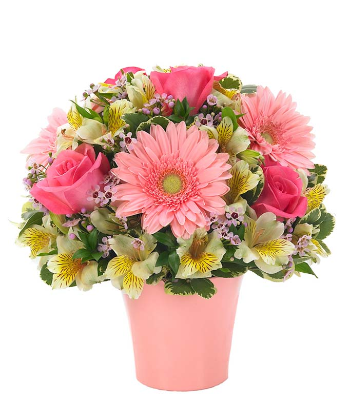 Pink gerbera daisies arranged with pink roses