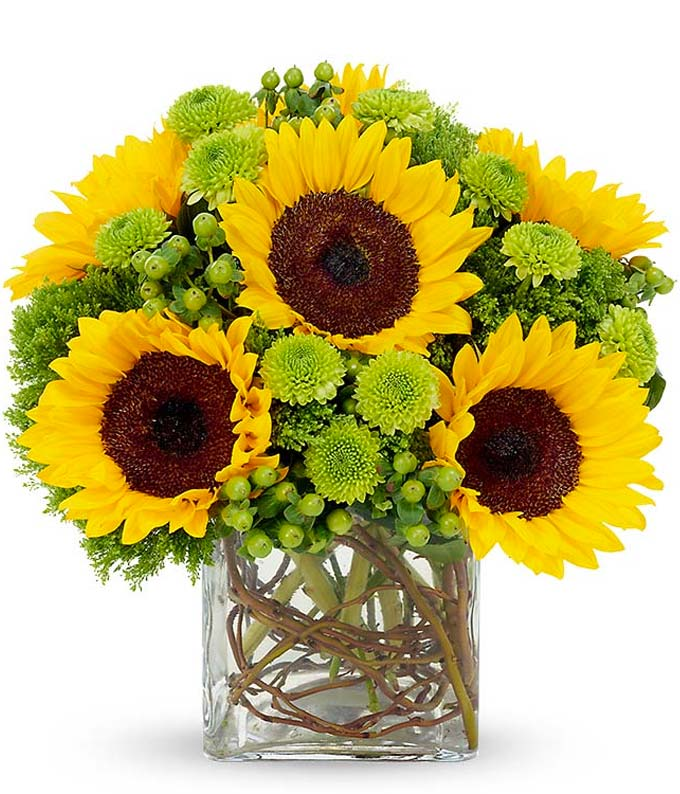 Sunflower bouquet by a florist with green poms