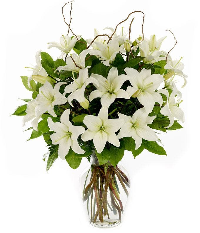Tall white lilies in a glass vase