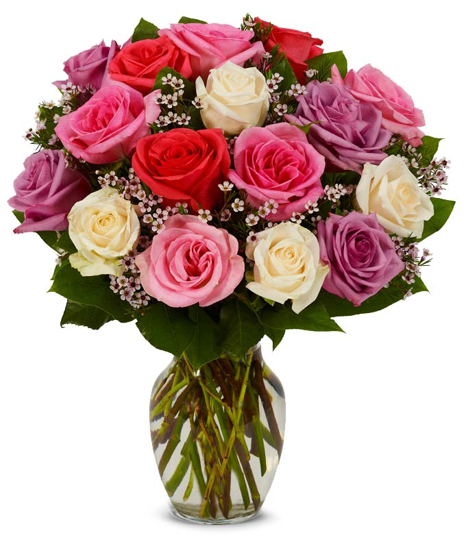 18 Pastel roses including purple, white and light pink