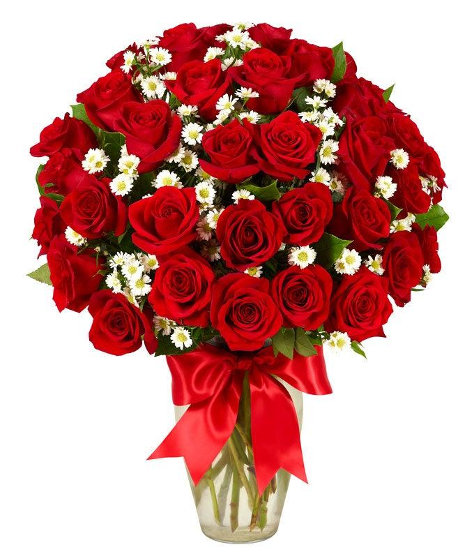 3 Dozen Roses - Red